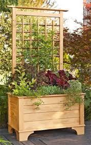 Trellis As Privacy Screen Trellis Planter Box Diy Easy Video Instructions Planters