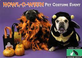 Spirit Halloween Pet Costumes Halloween Spirit Verde Valley Humane Pet Costume