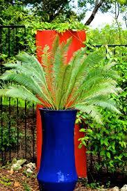 Medusa Planter Cacti Diana U0027s Designs Austin