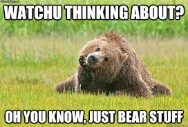 Bear Stuff Meme - watchu thinking about oh you know just bear stuff misc quickmeme