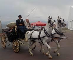 carrozze d epoca il raduno delle carrozze d epoca messina in carrozza la valle