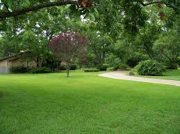 Landscaping Tyler Tx by Salcido Lawn A Full Service Lawn Maintenance Company In Tyler Tx