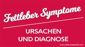 leberschwäche symptome fettleber symptome ursachen und diagnose leberwerte senken und