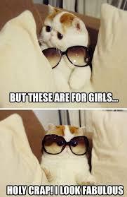 I Am Fabulous Meme - i am fabulous