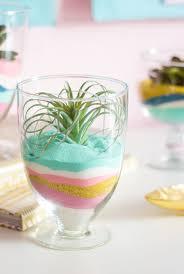 diy succulent sand art terrariums coloured sand air plants and