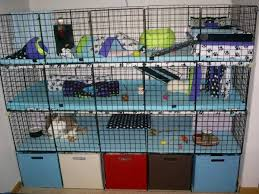 Make Rabbit Hutch Awesome Ideas For Guinea Pig Hutch And Cages Pet Supplies