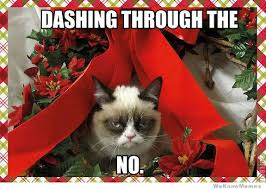 No Grumpy Cat Meme - dashing through the no grumpy cat meme christmas weekly