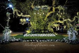 Marriage Decoration Themes - 55 best wedding backdrop decoration images on pinterest marriage