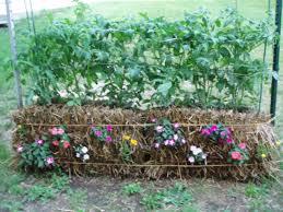 What To Plant In Your Vegetable Garden by Straw Bale Gardening Joel Karsten 9780984544905 Amazon Com Books