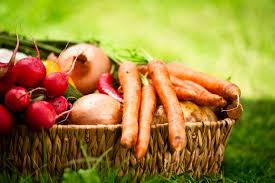 vegetable gardening tips for fall