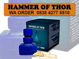 hammer of thor asli kediri 0838 4277 5510 youtube