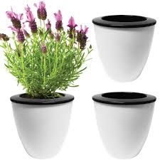 Self Watering Planters Amazon Com Evelots 3 Pack Of Self Watering Planters Small Or