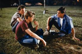 quotes about family in the outsiders women u0027s forum i love white boys page 176 stormfront