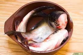poisson à cuisiner comment cuisiner du poisson 17 é