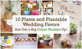 Top 10 Wedding Favors by Top 10 Plants And Plantable Wedding Favorsbeau Coup