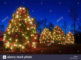 outdoor christmas trees have been decorated with red green and
