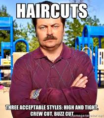 Swanson Meme - ron swanson as a cultural artifact new media literacy comm2f00