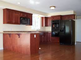Best Wood For Kitchen Floor Picture Of Kitchen With Dark Wood Flooring Remarkable Home Design