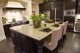 Gourmet Kitchen Designs Pictures by Styles And Design Kitchensbycarollee