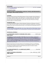 Resume Sales Examples by Examples Of Resumes 87 Captivating A Good Resume Marketing