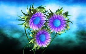 hd images of flowers hd 3d flower wallpaper 2017 live wallpaper hd