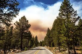 Wildfire Fighting Canada by Fighting Forest Fires Before They Get Big U2014with Drones Wired