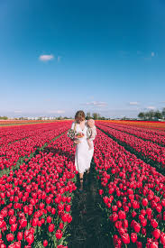 barefoot blonde in holland at the tulip festival kid pinterest