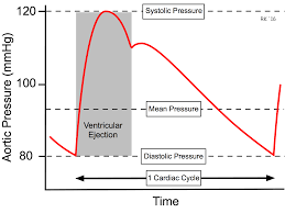 Map Equation Cv Physiology Mean Arterial Pressure