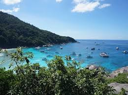 best places to go scuba diving in thailand triphobo