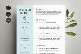 Template Word Resume Resume Template Mac Free Basic Resume Format Free Basic Resume