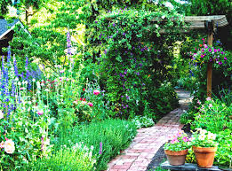 Ideas For Very Small Gardens by Very Small Garden Ideas On A Budget Google Search Projects
