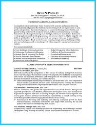 resume career summary entrepreneurial experience resume free resume example and this is a part that is the most imp small business owner resume and business