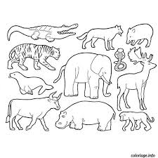Coloriage Animaux De La Savane dessin