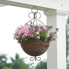 best 25 flower baskets ideas on pinterest hanging flower