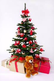 Christmas Tree Shopping Tips - my 12 nutrition tips of christmas the belly fat fighter u0027s blog