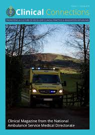 ambulance magazine issue 1 by one little studio issuu