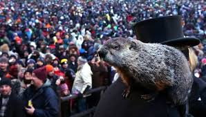 why do we celebrate groundhog day mnn nature network