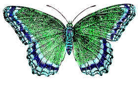 Blue And Green Butterfly - vintage butterfly free vintage