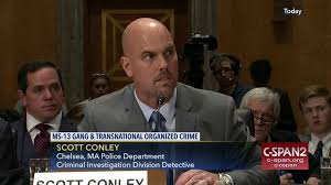 organized crime ron johnson ms 13 gangs ms 13 gang transnational organized crime
