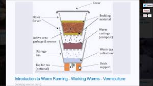 how does a worm farm work plus tips youtube
