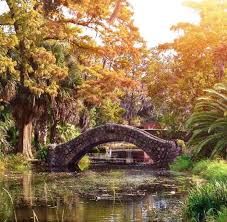 Louisiana natural attractions images Best 25 new orleans travel ideas nola vacation jpg