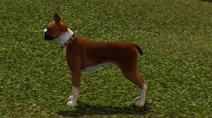 sims 3 boxer dog mod the sims the fawn boxer