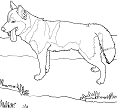 husky puppy coloring pages photo happy dog heaven