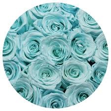 turquoise roses medium box light blue roses the glamorous roses