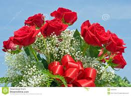 Red Rose Bouquet Red Rose Bouquet Stock Photo Image 5995540