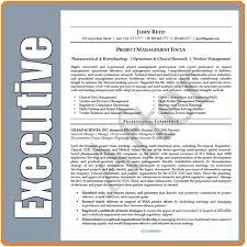 High Level Resume Download Executive Resume Writers Haadyaooverbayresort Com