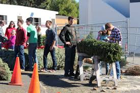 st monica academy buy your christmas tree today and support