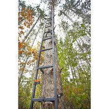 guide gear 20 u0027 tree ladder 177434 climbing sticks u0026 tree steps