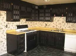 Painting Kitchen Cabinets By Yourself DesignWallscom - Black laminate kitchen cabinets