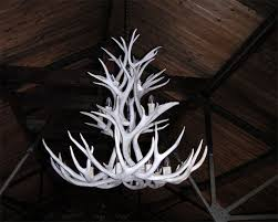 Antler Chandelier Net White Antler Chandelier The Aquaria